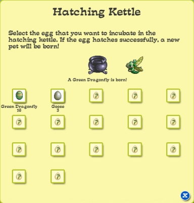 035-HatchingKettle.JPG