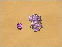 Pet11-PurpleDragon.jpg