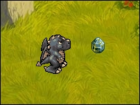 Pet16-BlackDragon.jpg